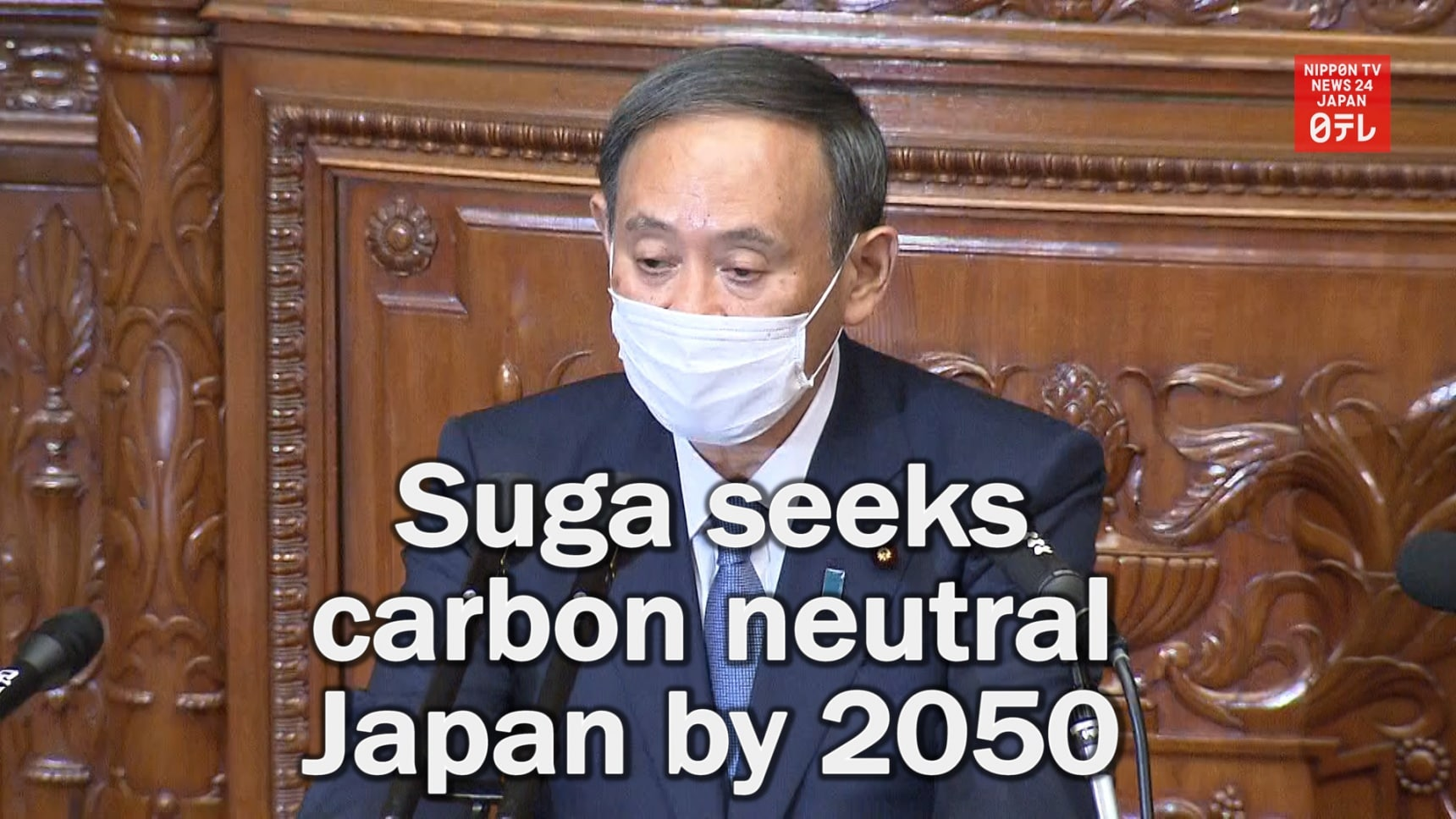 A Carbon Neutral Japan by 2050