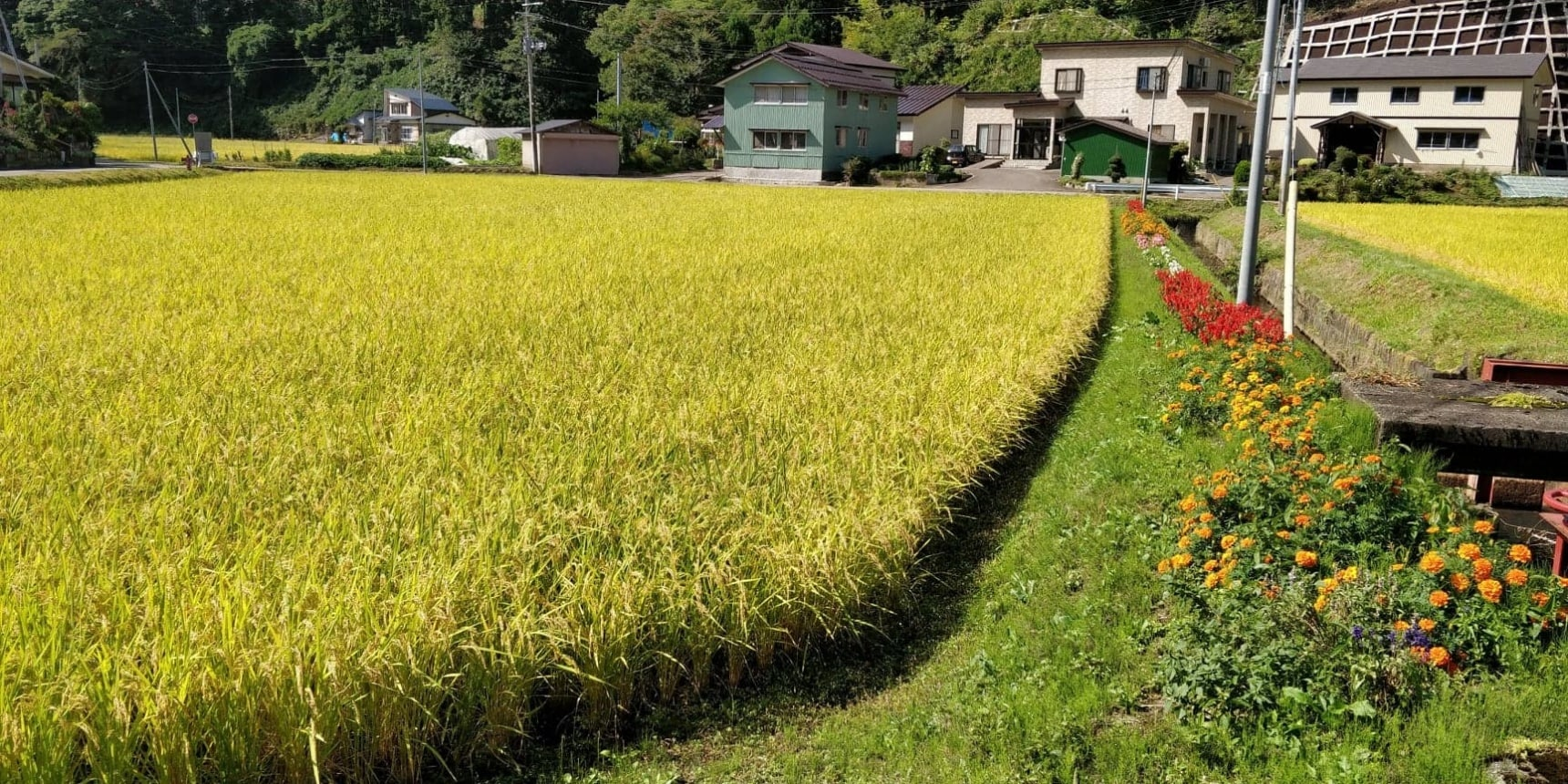 Get Hands-on in Rural Japan: Akita Farm Stay