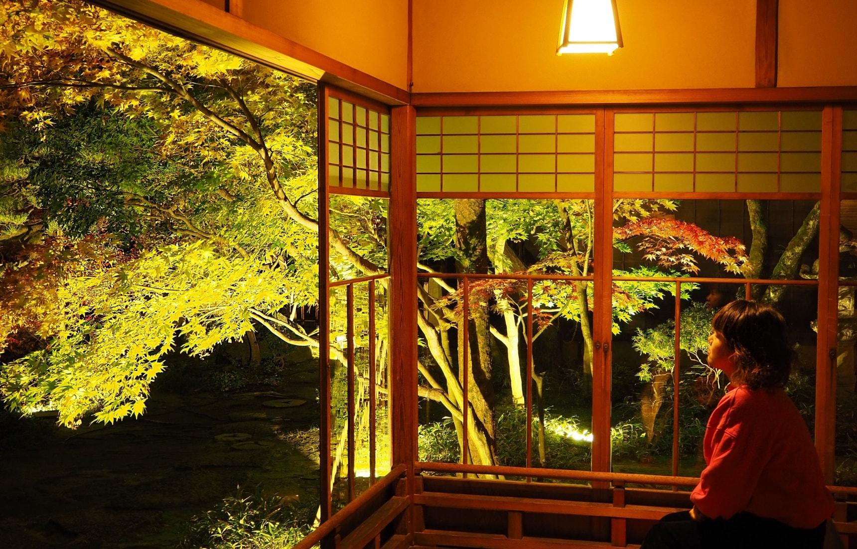 An Enchanting Autumn Light-up at Saito Villa