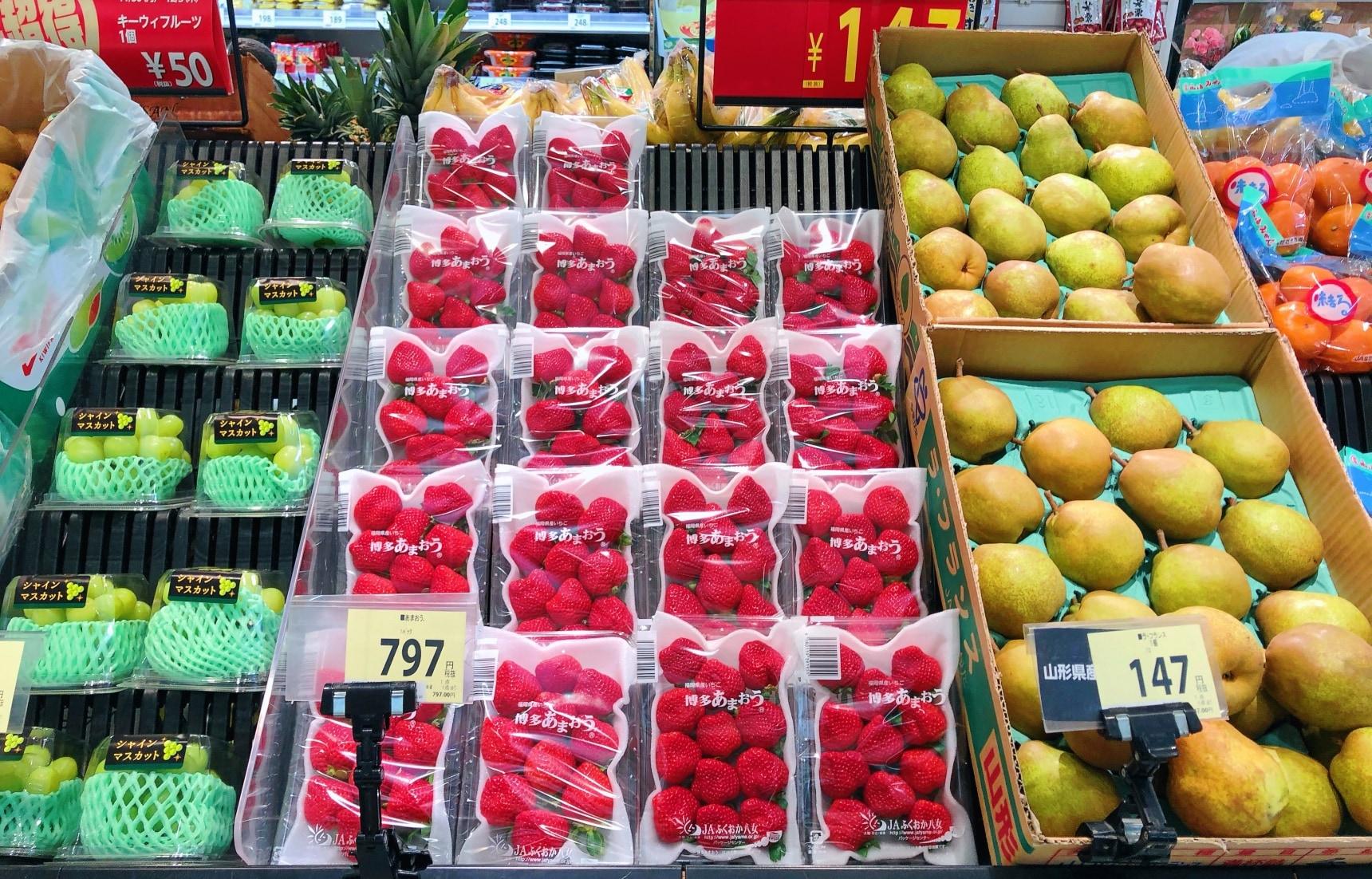 """日本的水果惊为天价?吃个西瓜就会变身""""土豪""""!这背后..."""