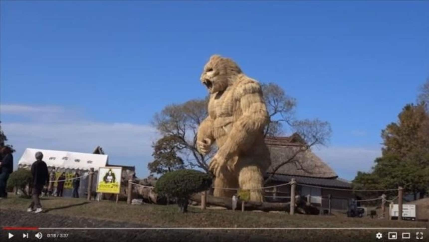 Fukuoka's Giant Gorilla Is Symbol of Strength