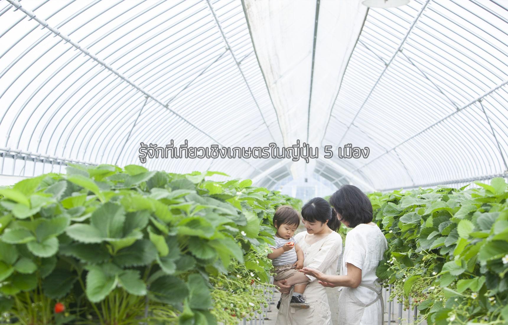 รู้จักที่เที่ยวเชิงเกษตรในญี่ปุ่น 5 เมือง