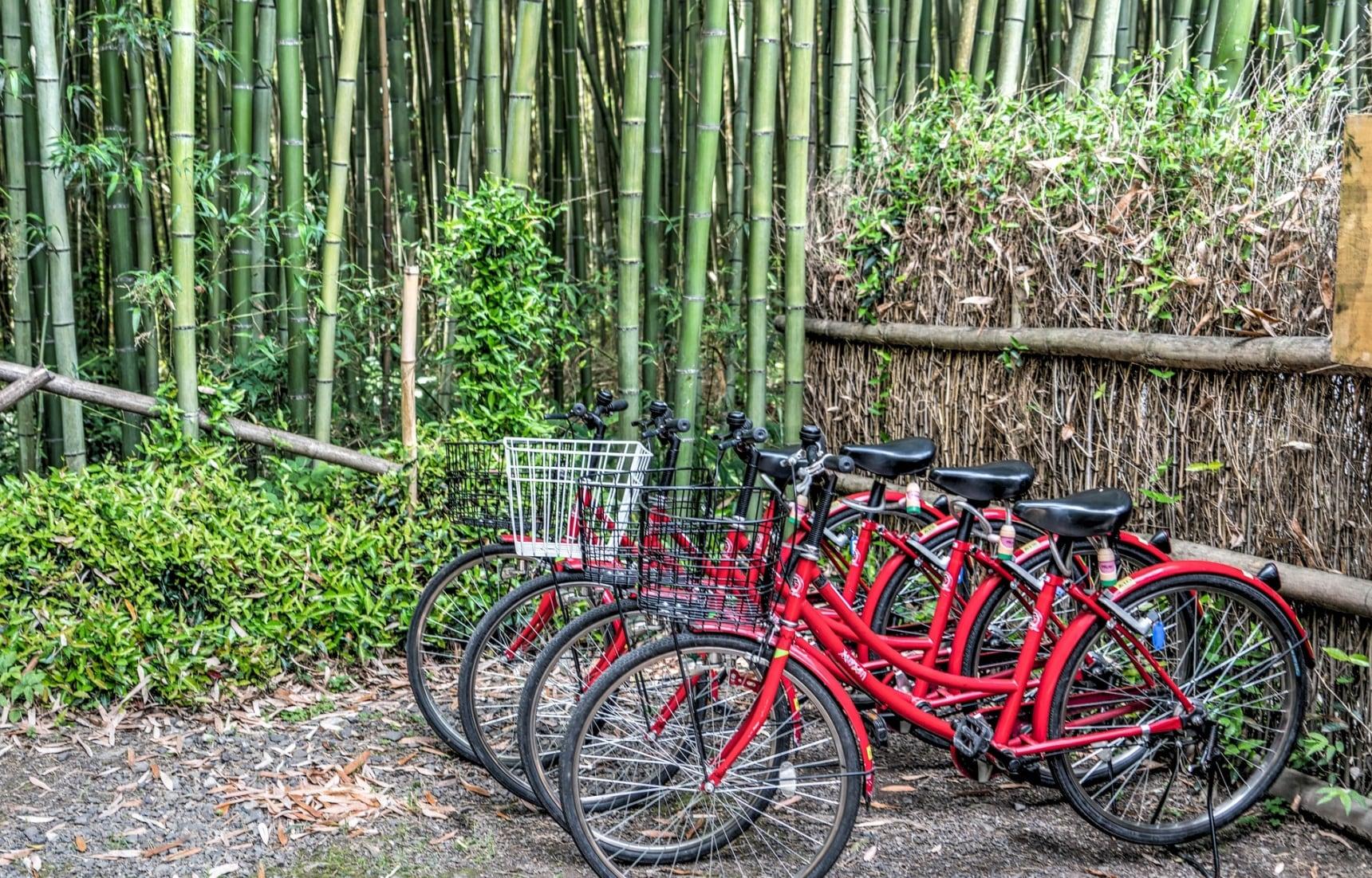8 Bike Tours in Kyoto