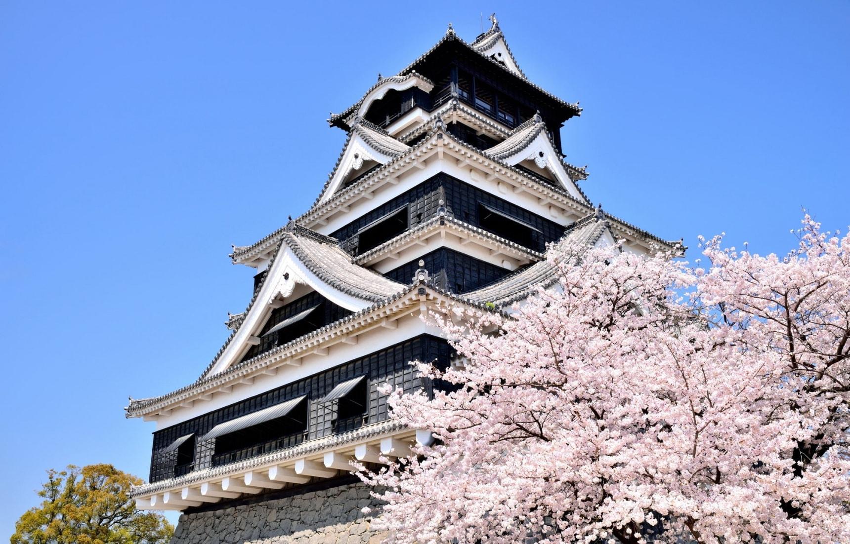 """熊本县:樱花季旅行攻略——浪漫日本九州""""上天下海""""之旅"""