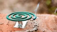 蚊取り器・蚊対策グッズおすすめ人気ランキング16選|屋内でも屋外でも手軽に!