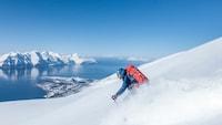 スキーグローブおすすめ人気18選|キッズやレディースもご紹介!ヘストラ・ロイシュなどブランド多数 - Best One(ベストワン)