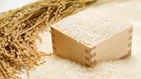 どのお米が美味しい?主婦が選んだ人気の「お米」ランキング