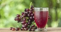 ぶどうジュースのおすすめ11選|ワインメーカーの高級品が人気!おやつの作り方もご紹介