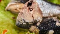 いわしの缶詰おすすめ人気ランキング10選|栄養豊富でおつまみにも! - Best One(ベストワン)