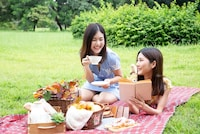 レジャーシートおすすめ人気ランキング13選 - Best One(ベストワン)