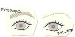 同じ大きさの目とは思えない違い!
