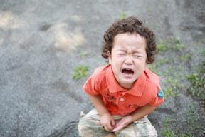 2歳児のかんしゃくの原因は、記憶力の発達と自立心の目覚めからくる