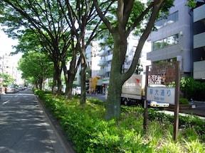 かつて歌舞伎町を流れていた蟹川を歩く