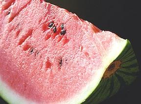 スイカ:夏野菜の代表。消耗したエネルギーを素早く補給