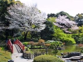ラウンジで絵になる桜を愛でる/ホテルニューオータニ