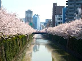 2位:目黒川