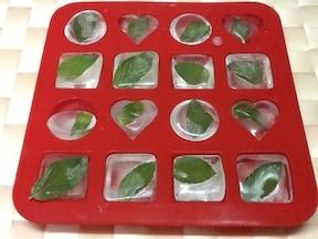 ミントの活用法:ミント氷