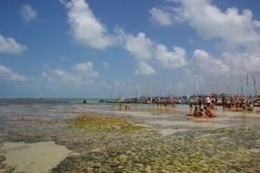 ブラジルのビーチタウン『マセイオ』