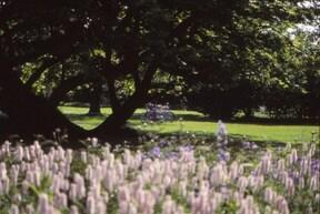 デンマーク最古の庭園『ローゼンボー城公園』