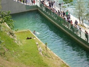 ベルンの熊公園