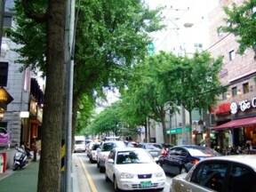 ソウルを代表するトレンドスポット『街路樹通り』