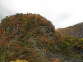 四季折々の彩りが美しい道路『いろは坂』!
