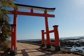 南国気分を味える青島&日南海岸ドライブがおすすめ