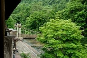 つり橋がある昔の雰囲気に癒される『本家 伴久』