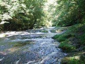 菊池渓谷~鍋ヶ滝へ、涼を求めて熊本をドライブ