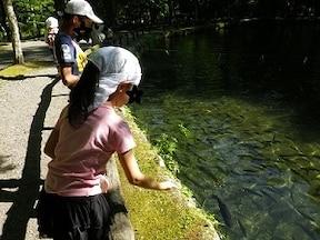 『さかなと森の観察園』で魚の研究を楽しく学ぶ!