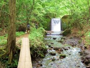 浅間山北麓の大自然に抱かれたオートキャンプ場(群馬県)