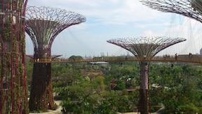 見所満載!近未来的外観の巨大植物園