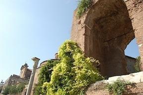 ローマ帝国の政治経済の中心地『フォロ・ロマーノ』
