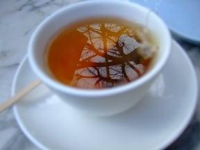 早稲田大学のイチョウの木の下の紅茶カップに小さな絶景
