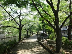 歩くだけを楽しむのに最適な「神田川沿い」