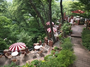 ドッグカフェ『カフェテラス 樹ガーデン』