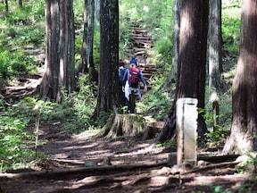【奥多摩】高水三山ハイキング