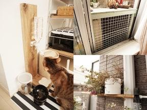 実例1. 猫と暮らす狭小ワンルームでシンプルに暮らす