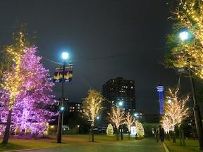 冬のデートにぴったり!横浜のクリスマスイルミネーション