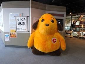 東京税関本関@テレコムセンター駅