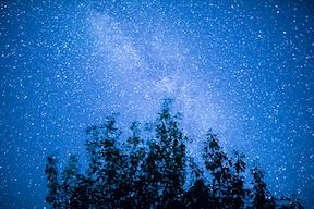 【野外シネマ】星降る夜空の下で映画をみよう