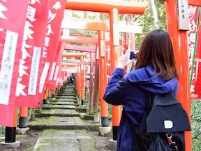 【大仏ハイキングコース】縁結び、金運、仕事運UP!