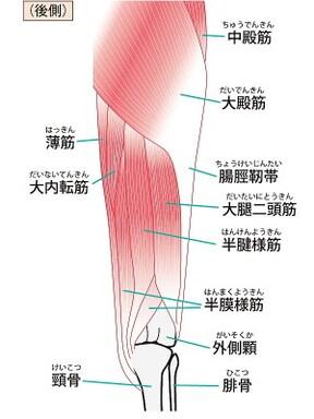 脚パカエクササイズの効果、やり方は?