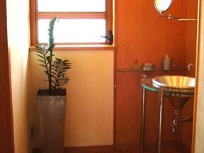 室内をモダンな空間に「ザミオクルカス ザミーフォリア」