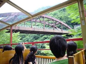 京都の自然を感じる「嵯峨野トロッコ列車」