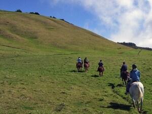 まるで映画の世界!絶景大自然のなかで乗馬体験