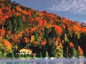 カナダの秋を満喫!メープル街道