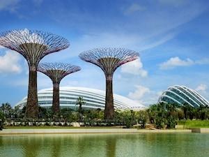 【シンガポール】高さ50mの人口ツリーに注目!「ガーデンズ・バイ・ザ・ベイ」