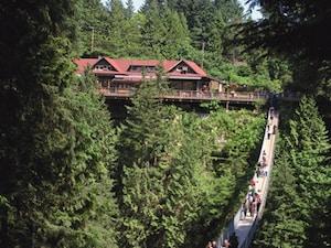 緑豊かな渓谷を駆け抜ける風を感じる、キャピラノ吊り橋