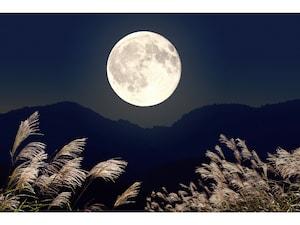 お月見とは?2021年はいつ?十五夜だけじゃない3つの月見